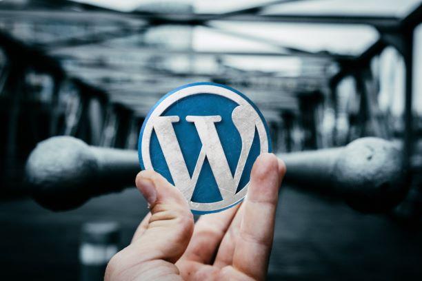 Wordpress Homepage erstellen lassen in Düsseldorf